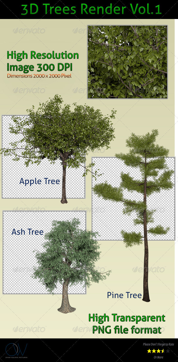 Trees 3D Render - 3D Renders Graphics