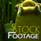 """Fishes 16"" Stock Footage in Full HD 1920x1080 - VideoHive Item for Sale"