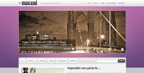 ThemeForest Maxxed Portfolio and blog theme 111906