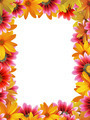 flower frame vertical - PhotoDune Item for Sale