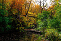 Fall Autumn Colors Creek Landscape - PhotoDune Item for Sale