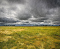 Heavy Rain Over a Prairie in Brittany, France - PhotoDune Item for Sale