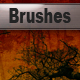 5 Hi-res Tree Brushes - GraphicRiver Item for Sale