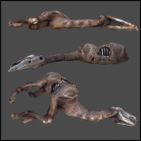 3DOcean Dead Animal 3217081