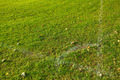 Green grass football corner - PhotoDune Item for Sale