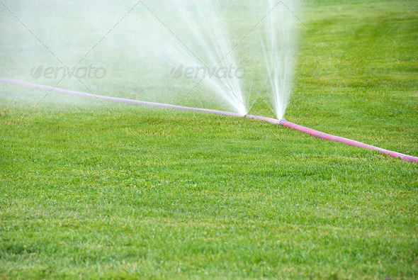 Sprinkling on grass from damaged hose - Stock Photo - Images