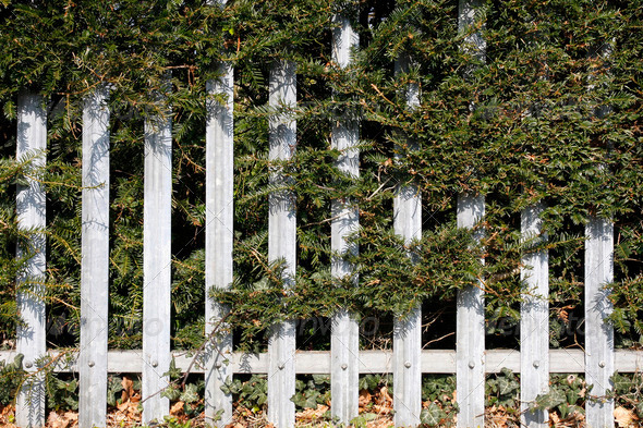Grey metal fence - Stock Photo - Images