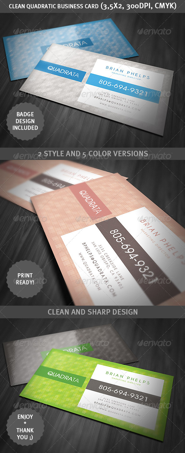 Clean Quadratic Business Card - Corporate Business Cards
