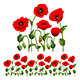 Border from poppies. - GraphicRiver Item for Sale