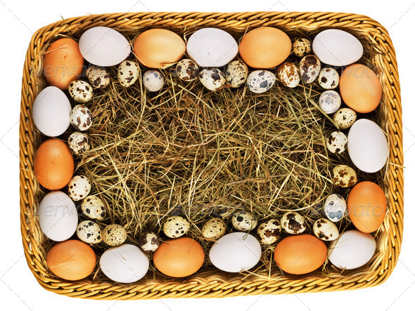 Fresh eggs in straw basket isolated - Stock Photo - Images