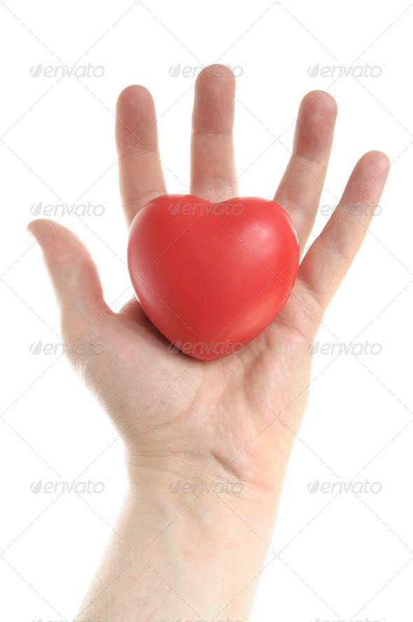 Man&#x27;s Hand Holding a Red Heart - Stock Photo - Images