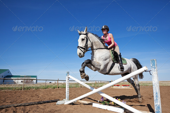 Show Jumper - Stock Photo - Images