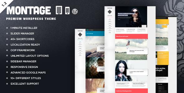 ThemeForest Montage Responsive Portfolio WordPress Theme 2417616