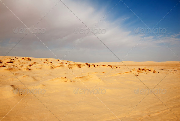 Sand dunes in Sahara - Stock Photo - Images