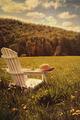 Adirondack chair in a field of tall grass - PhotoDune Item for Sale