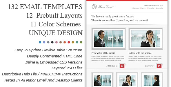 Success Premium Email Newsletter Templates