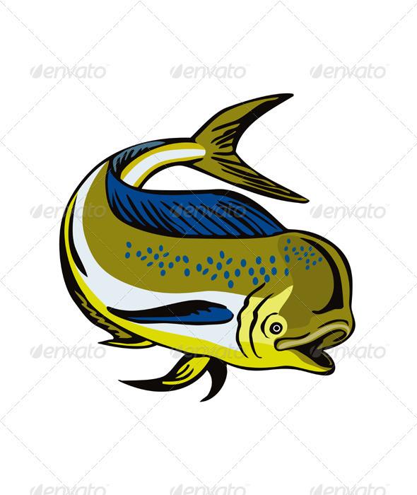 GraphicRiver Dorado Dolphin Fsh Mahi-Mahi 3310447