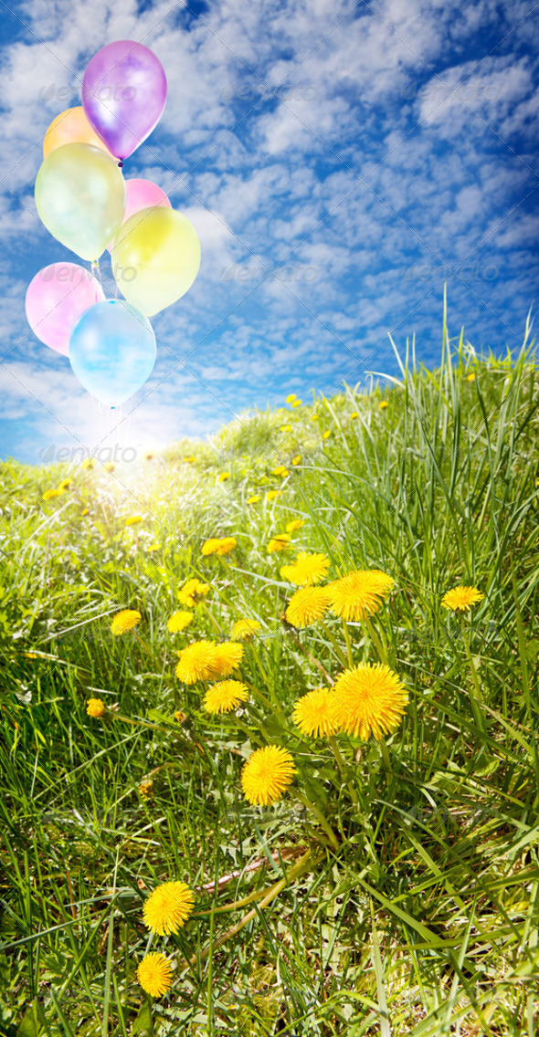 Sunny field with balloons - Stock Photo - Images