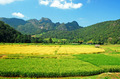 Maehongson Thailand - PhotoDune Item for Sale