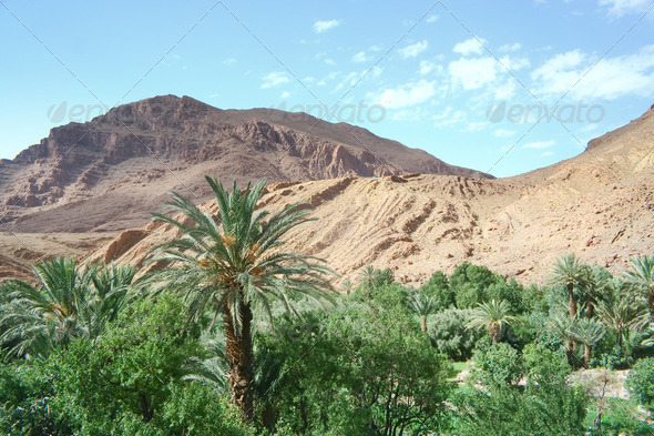 Moroccan  landscape - Stock Photo - Images