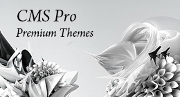 CMS Pro themes