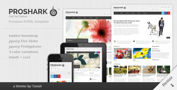 Proshark Responsive Corporate HTML Template - Corporate Site Templates