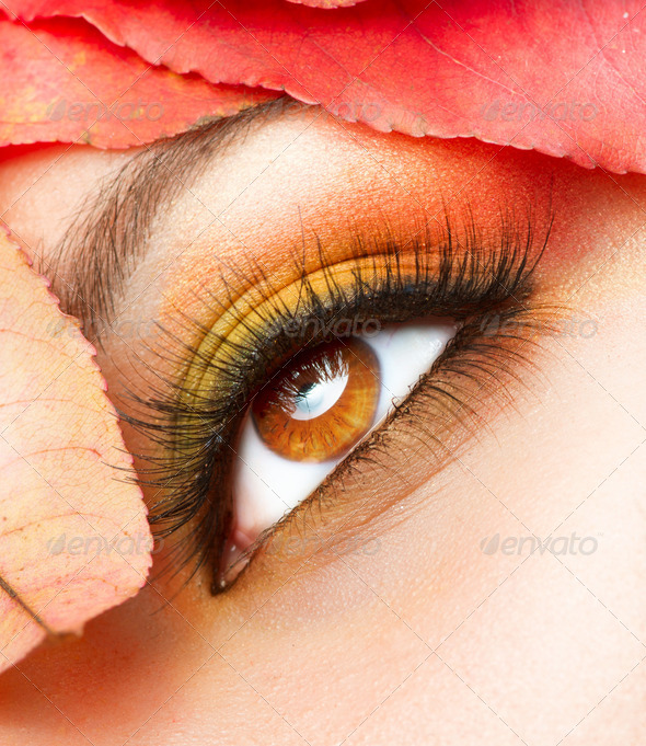 Autumn Makeup. Fall Make-up Closeup - Stock Photo - Images