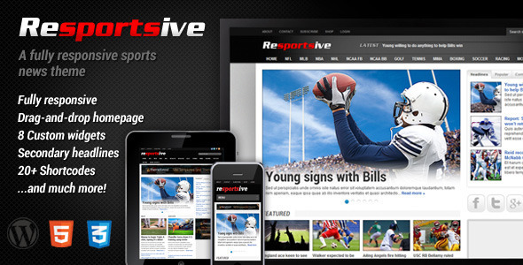 ThemeForest Resportsive Responsive Sports News Theme 2667962