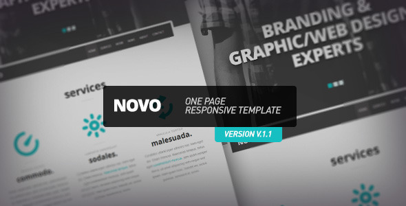 ThemeForest Novo One Page Responsive Template 3285858