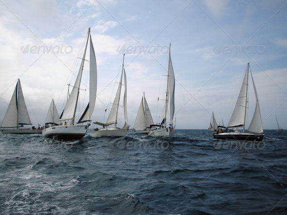 Veleros en regata - Stock Photo - Images