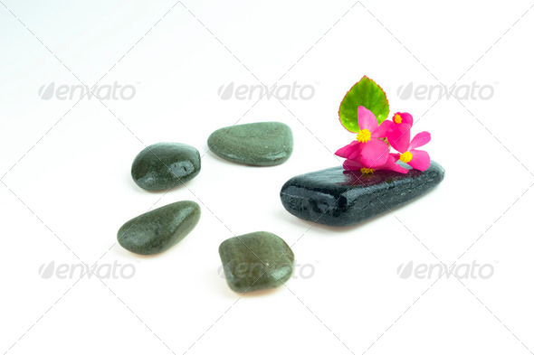 Stones with flower - Stock Photo - Images