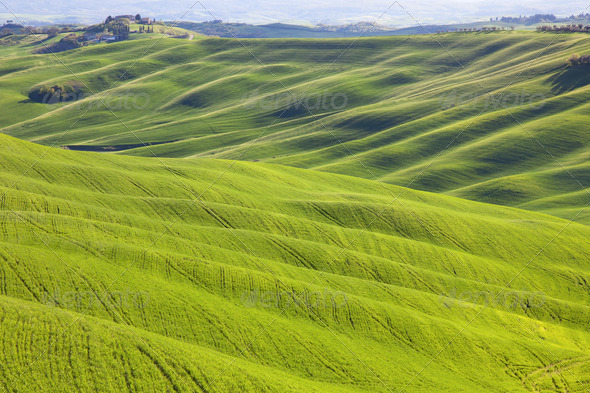 Tuscany, undulating terrain on sunset Crete Senesi rural landscape, Italy. - Stock Photo - Images