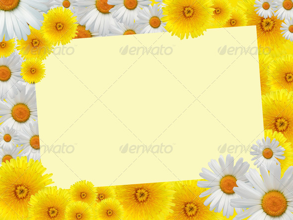 Flowers Greeting Card - Stock Photo - Images