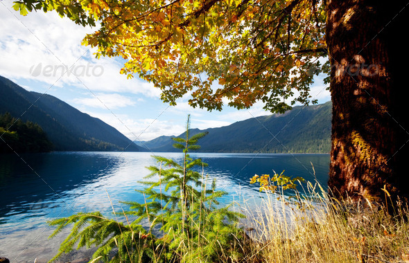 Autumn lake - Stock Photo - Images