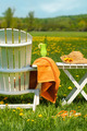 Adirondack chair in grass ready for relaxing - PhotoDune Item for Sale