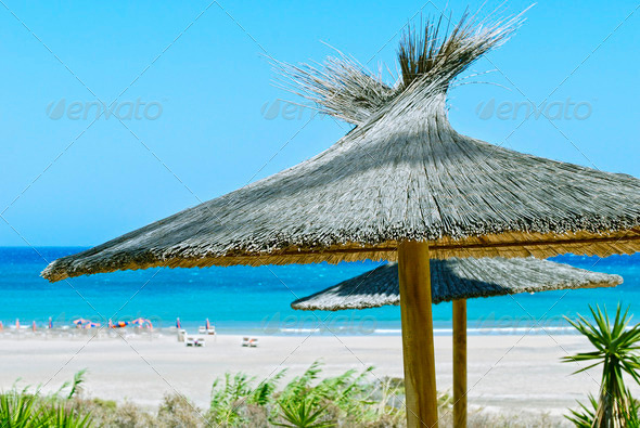 Beach Umbrellas - Stock Photo - Images