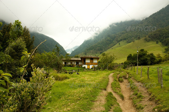 Path by Cocora Valley - Stock Photo - Images