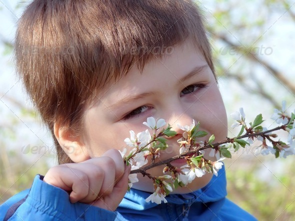 boy with twig spring - Stock Photo - Images