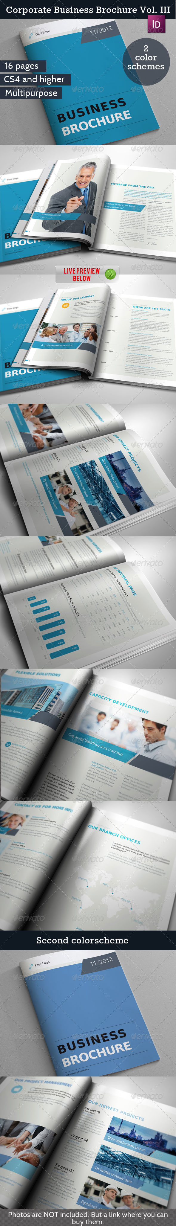 GraphicRiver Corporate Business Brochure Vol III 3342208
