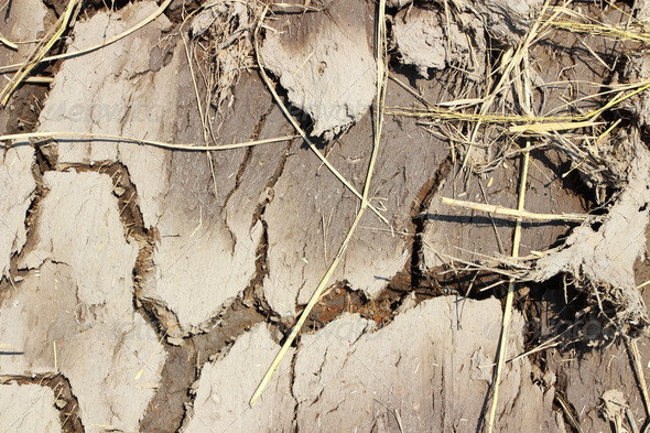 Crack soil on dry season, Global worming effect. - Stock Photo - Images