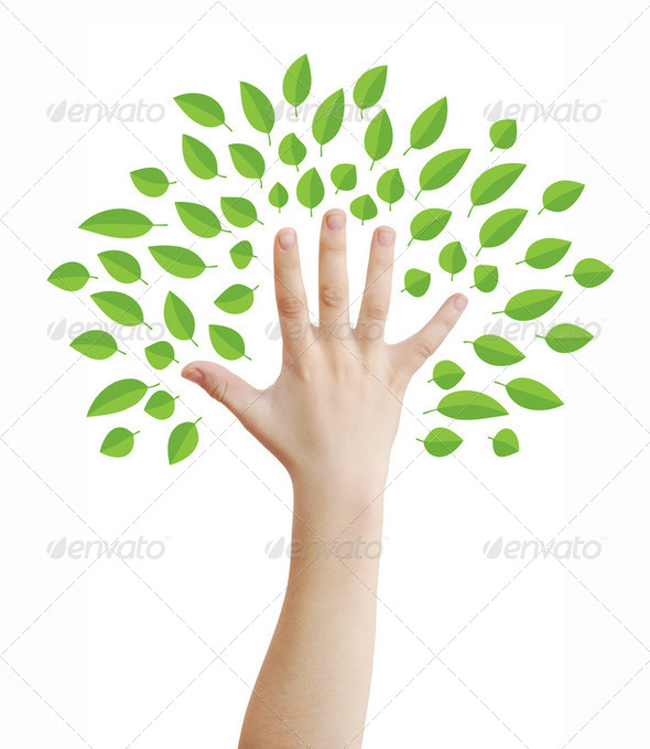 Hand as tree - Stock Photo - Images