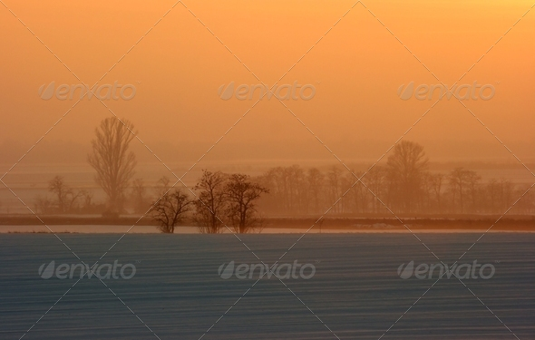 Landscape - Stock Photo - Images