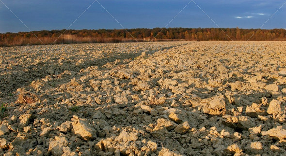 Cultivated field - Stock Photo - Images