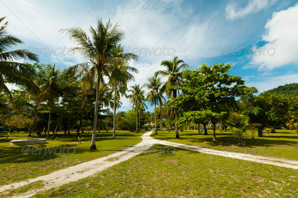 Tropical landscape - Stock Photo - Images