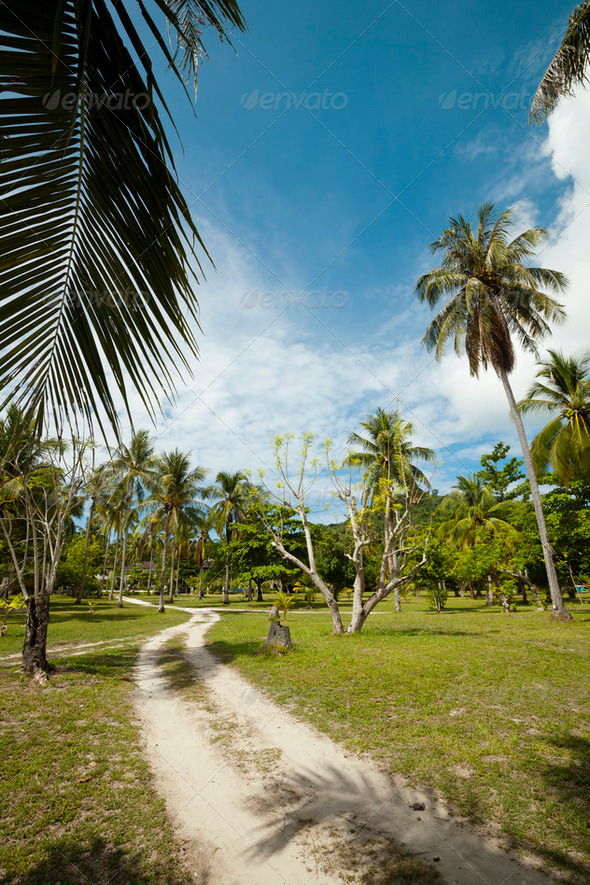 Tropical landscape, vertical shot - Stock Photo - Images