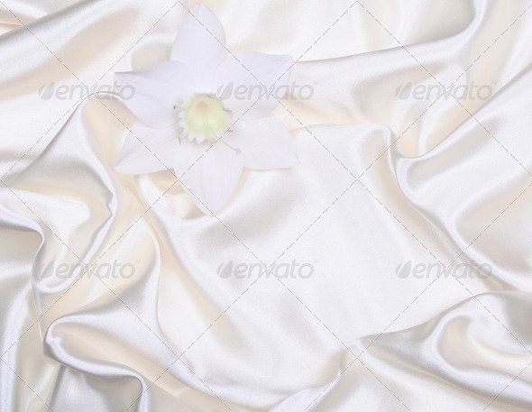 White flower on smooth elegant white silk as wedding background - Stock Photo - Images