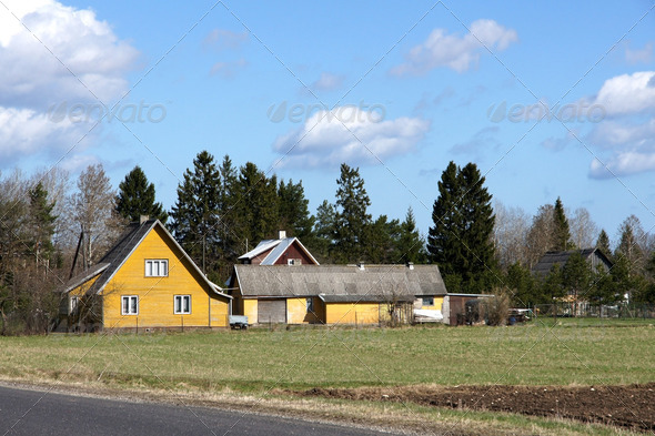 The House and Plants - Stock Photo - Images