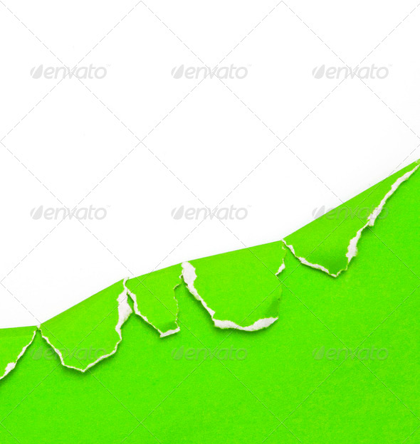 green ripped paper on white background - Stock Photo - Images