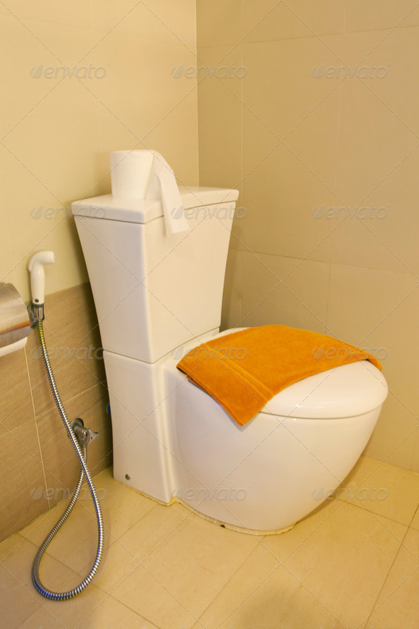 Home flush toilet - Stock Photo - Images