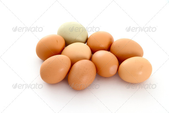 Egg Bunch - Stock Photo - Images